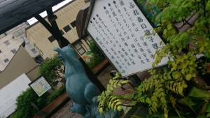 tanuki-naname