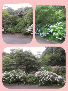 LINEcamera_share_2014-06-17-22-34-26.jpg