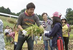 10月4日稲刈り実施