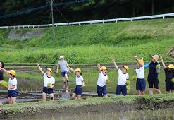 今年は七滝中央小の子供たちと実施