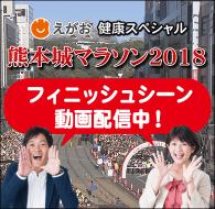 熊本城マラソンフィニッシュシーン動画配信