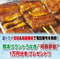 夏ドラマ&関連番組を見て1万円分のうなぎが当たる!