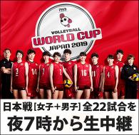 ワールドカップバレー