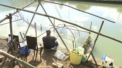 シロウオ漁始まる 天草市
