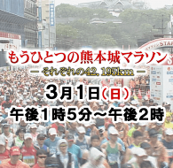 もうひとつの熊本城マラソン~それぞれの42.195km~